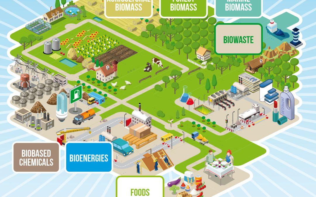 3e Colloque européen sur la Bioéconomie 2019
